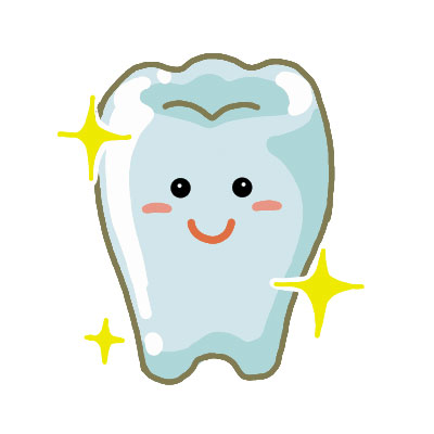歯32(110201032)